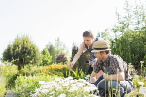 entretenir les plantes de son jardin