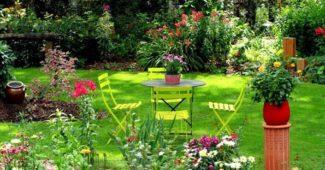entretien jardin
